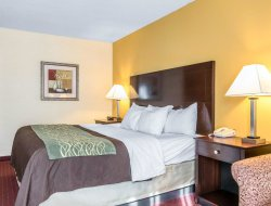 Pets-friendly hotels in Dry Ridge