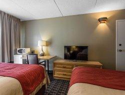 Pets-friendly hotels in Midland