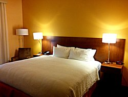 Business hotels in Kissimmee