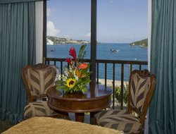 Pets-friendly hotels in St. Thomas Island