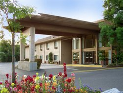 Top-4 hotels in the center of Sonora