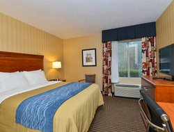 Pets-friendly hotels in Springfield