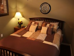Pets-friendly hotels in Cotulla