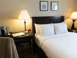 Pets-friendly hotels in Yellowknife