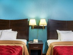 Pets-friendly hotels in Selma