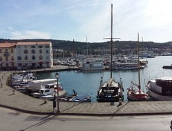 Pets-friendly hotels in Izola