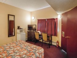 Pets-friendly hotels in Edson