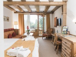 Pets-friendly hotels in Flims