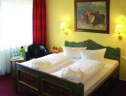 Pets-friendly hotels in Hoesbach