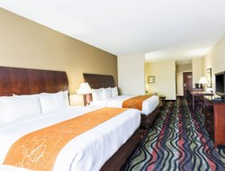 Pets-friendly hotels in Beaumont