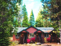 Mount Shasta hotels with restaurants