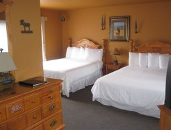Pets-friendly hotels in Mount Shasta