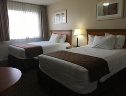 Pets-friendly hotels in Alamosa