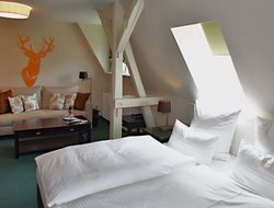 Pets-friendly hotels in Stolberg (Harz)