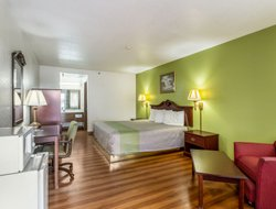 Pets-friendly hotels in Santa Rosa