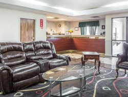Pets-friendly hotels in Marietta