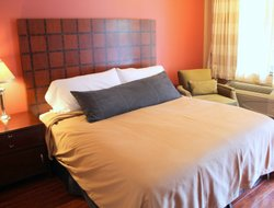 Pets-friendly hotels in Ouray