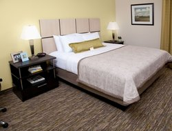 Pets-friendly hotels in Binghamton