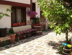 Pets-friendly hotels in Bansko