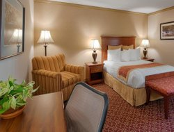 Pets-friendly hotels in Morristown