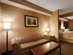Pets-friendly hotels in Huntsville
