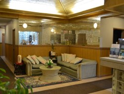 Pets-friendly hotels in Koror