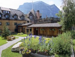 Lake Louise hotels with restaurants