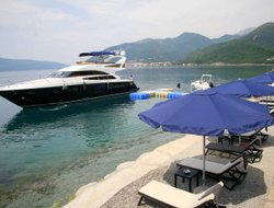 Pets-friendly hotels in Montenegro