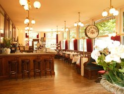 Pets-friendly hotels in Berne
