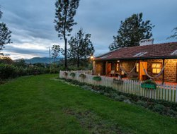 Pets-friendly hotels in Coonoor