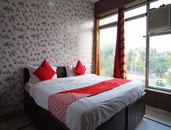 Pets-friendly hotels in Faridabad