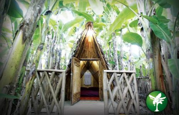 фото Banana Forest Chiang Mai Homestay 969150449