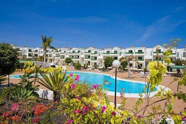 Lanzarote Palm - фото 21