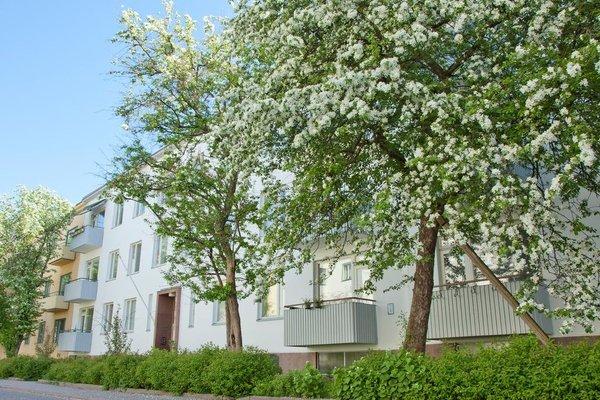 Huoneistohotelli Eskolampi - фото 23