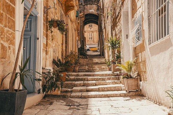 Cornelius Valletta Properties - фото 17