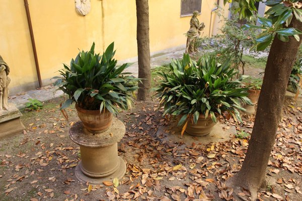 Appartamento Tornabuoni - фото 14