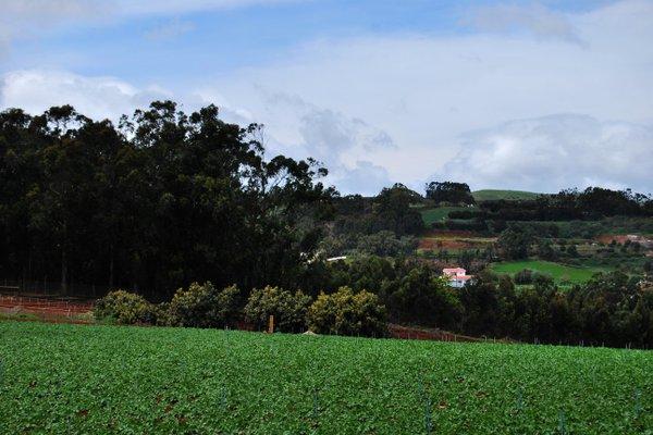 Apartamento Rural Santa Cristina - фото 19