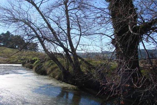 Complex Rural Can Caubet - фото 20