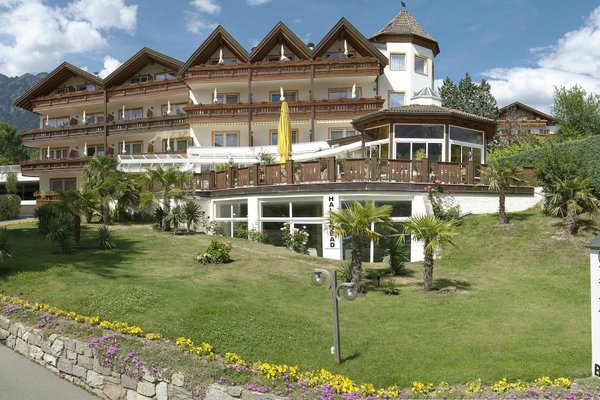 Hotel Olympia - 19