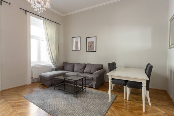 Vienna New Apartment Centre Luxury - фото 6