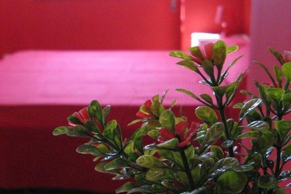 Titohome Red & Violet - 20