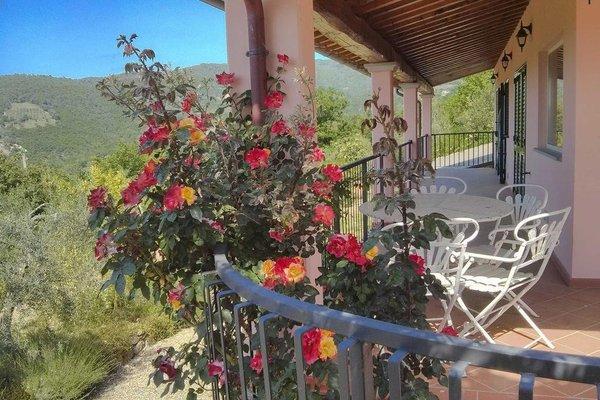 Tuscany Roses - фото 16