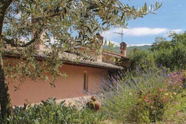 Tuscany Roses - фото 22