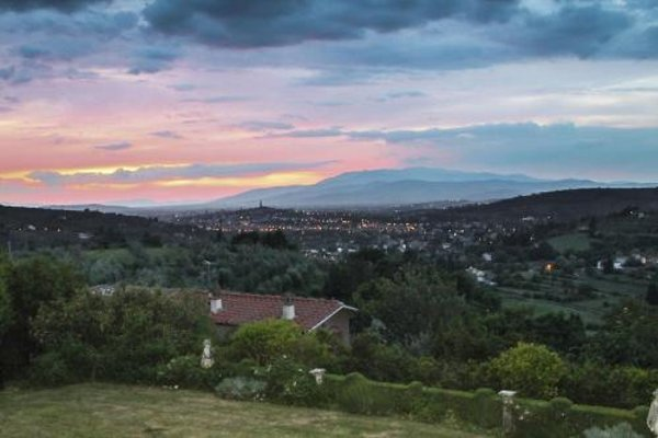 Tuscany Roses - фото 23