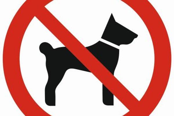 Apartamenty Granitica Zakopane - фото 8