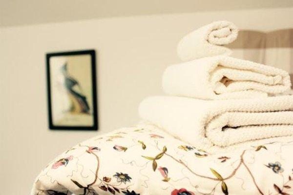 Bird House Apartment - 19