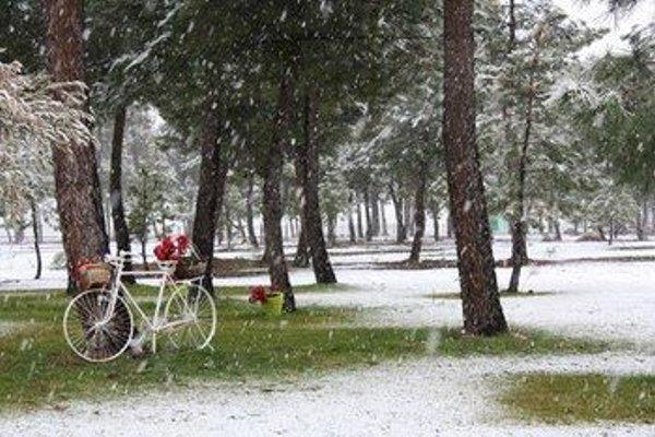 Hotel Rural Montalvo Centro Ecuestre - фото 11