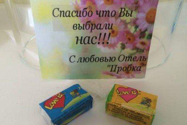 Мини-Отель Пробка - фото 10