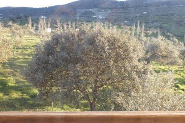 Sierras y Valles - фото 16