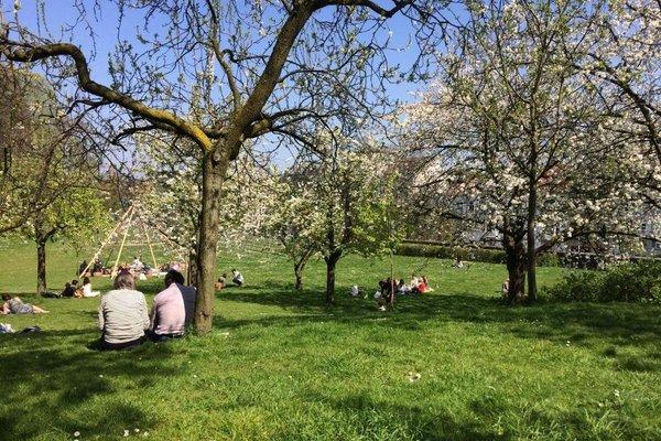 Designflats Gent - фото 3